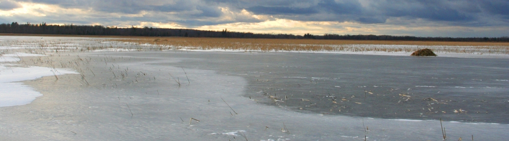 Ice Fishing and Christmas (1/3)