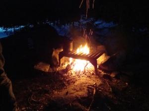 BWCA Fire 2014