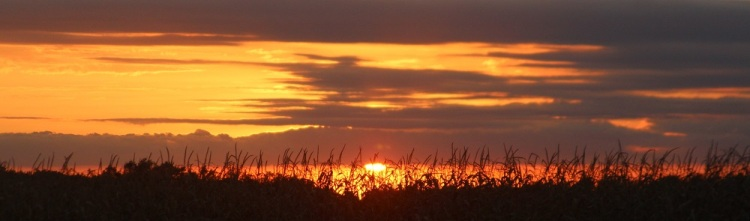 Sunset panarama email