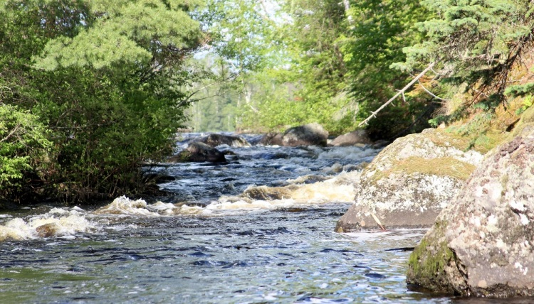 BWCA Malberg River email
