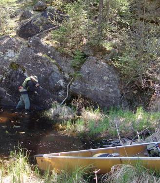 Dwight Crossing on a sunken log Bwca 1