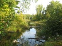 waptus creek eml