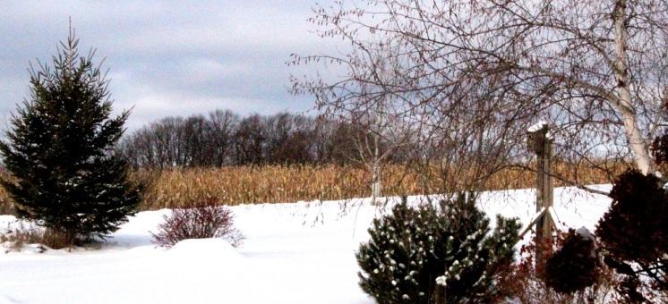 snow2 cp eml