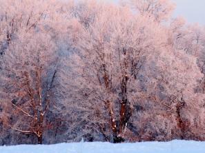 Frost In the sun ed eml