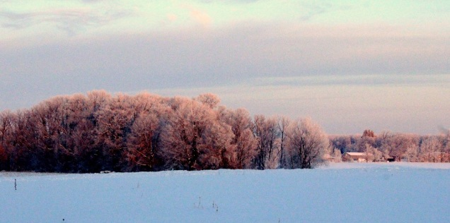 Frost Morn Farm view ed eml