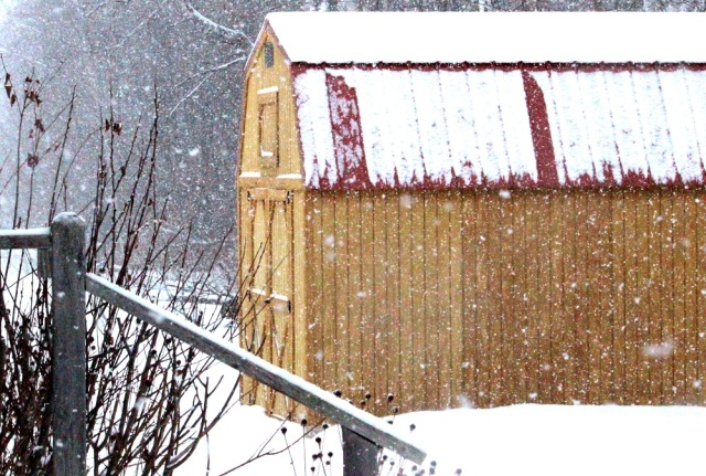 Snow on the shed ed eml
