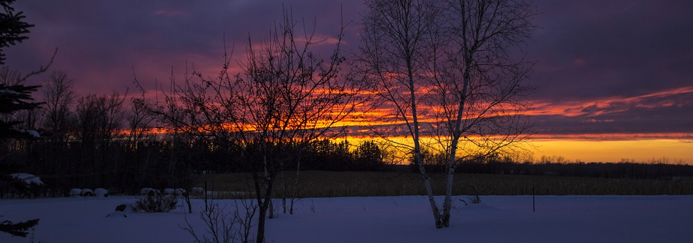 Jan 25 sunset 2020 eml