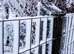 Frost fence 2eml