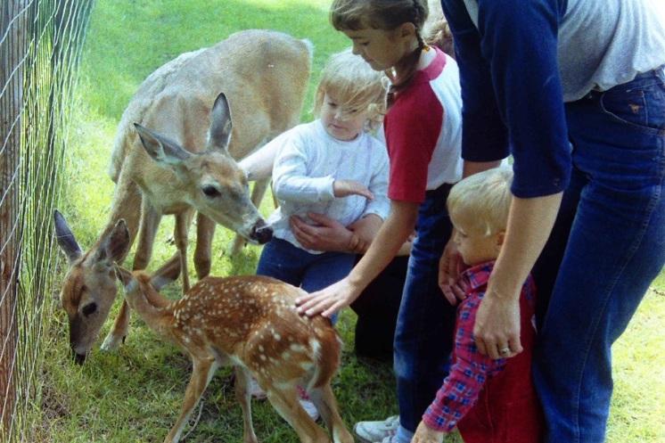 Kids and deer eml